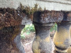 mossy pillars