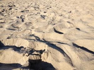 ridges in sand