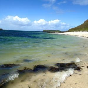 Coral Beach View